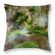 Aravaipa Creek Throw Pillow