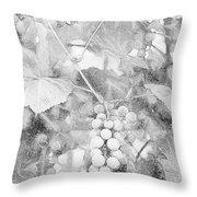 Arbor Grapes Sketch Throw Pillow