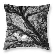 Arboreal Plateau 1 Throw Pillow