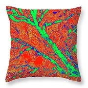 Arboreal Plateau 15 Throw Pillow