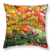 Arboretum Autumn Leaves Throw Pillow