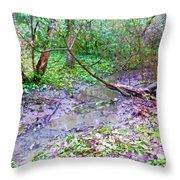 Arboretum Creek Painted Throw Pillow