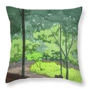 Arboretum Path Throw Pillow