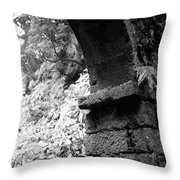 Arc Throw Pillow