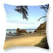 Arcadia Beach Throw Pillow