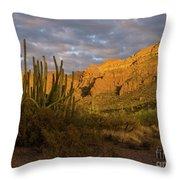 Arch Canyon 3 Throw Pillow