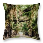 Arch Of Oaks - Evergreen Plantation Throw Pillow