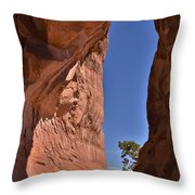 Arch Sliver Throw Pillow