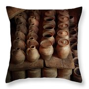Archaeologist - Pottery - Today's Dig Was Amazing Throw Pillow by Mike Savad