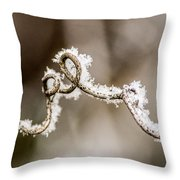 Arched Frosty Curlique Throw Pillow
