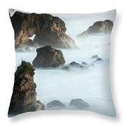 Arched Rock Sea Bird Throw Pillow