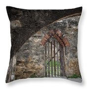 Arched Way Throw Pillow