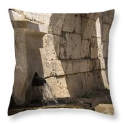 Arches Under The Agora Throw Pillow
