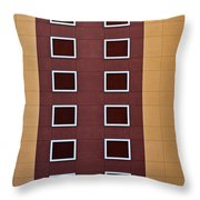 Architectural Geometry Throw Pillow