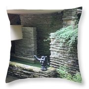 Architecture Frank Lloyd Wright Throw Pillow