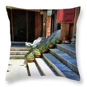 Architecture Tam Coc Vietnam Throw Pillow