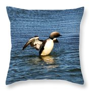 Arctic Loon Throw Pillow