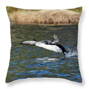 Arctic Loon Take Off Throw Pillow
