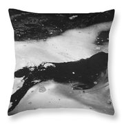 Arctic: Ringed Seal Throw Pillow