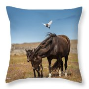 Arctic Tern Attacking Mare Throw Pillow