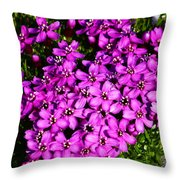 Arctic Wild Flowers Throw Pillow