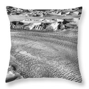 Arctic Wilderness Throw Pillow by James Billings