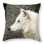 Arctic Wolf - On Watch Throw Pillow