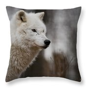 Arctic Wolf Pictures 1242 Throw Pillow