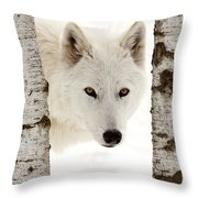 Arctic Wolf Seen Between Two Trees In Winter Throw Pillow