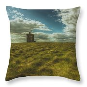 Ardmore Lookout Tower Throw Pillow