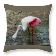 Are U Looking At Me Throw Pillow
