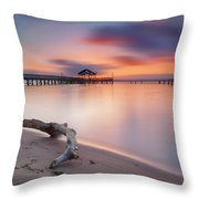 Are We Predestined To Get What We Get Throw Pillow