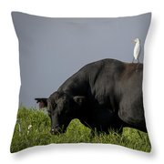 Are We There Yet? Throw Pillow
