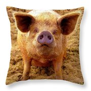 Are You Lookin' At Me? Throw Pillow