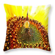 Are You Looking At Me - Butterfly Throw Pillow