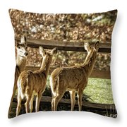 Are You Looking At Us Throw Pillow
