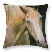 Are You Taking My Picture Throw Pillow