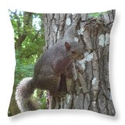 Are You Talking To Me? Throw Pillow