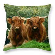 Are You Talking To Us Throw Pillow