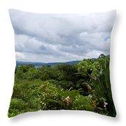 Arenal Lake And Volcano Throw Pillow