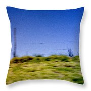 Arequipa Throw Pillow