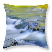 Argen River Throw Pillow