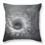 Argentine Giant Painted Bw Throw Pillow