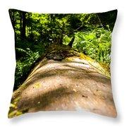 Argillite Kentucky Throw Pillow