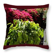 Argonaut Courtyard Throw Pillow