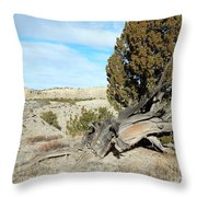 Arid Beauty Throw Pillow