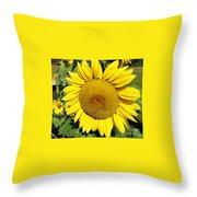 Arikara Sunflower Throw Pillow