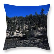 Ariziona View Throw Pillow