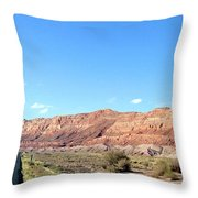 Arizona 17 Throw Pillow