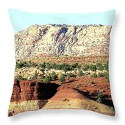 Arizona 18 Throw Pillow